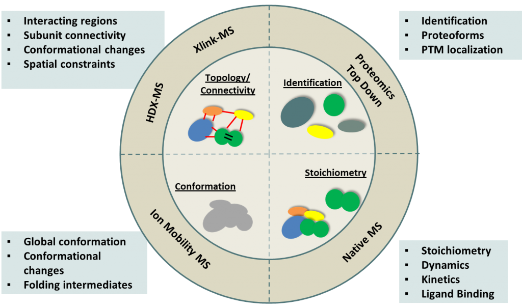 Graphic summary of protein characterization